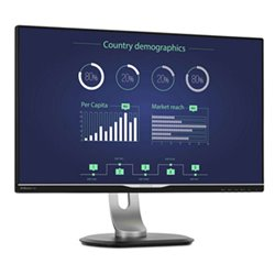 "Philips 25"" QHD LCD (USB-C, HDMI, DisplayPort, VGA, DVI)"